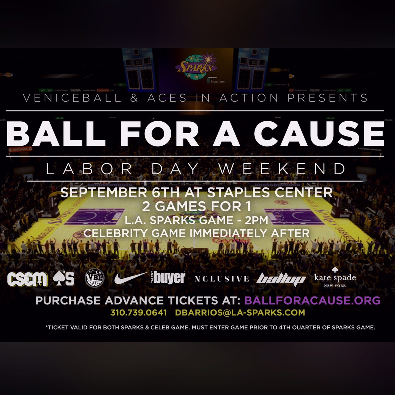 BALL FOR A CAUSE CELEBRITY GAME